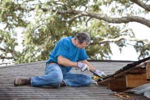 5 roof maintenance tips every  homeowner should know - Bauerle Roofing Indianapolis