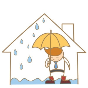 how to detect a roof leak - Bauerle Roofing Indianapolis