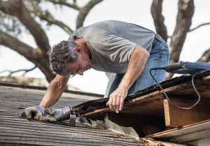 What Heat Damage Means for Your  Indianapolis Home - Bauerle Roofing Indianapolis